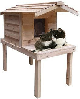 Cozycatfurniture Waterproof Insulated Cedar Outdoor Cat House Best And
